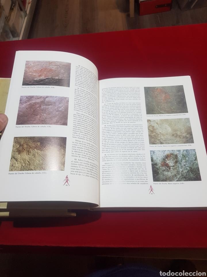 Libros de segunda mano: Libro arte prehistórico en Aragón de don Antonio Beltrán Martínez muy buen estado - Foto 4 - 206780615