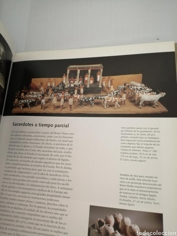 Libros de segunda mano: EGIPTO. Hombres. Dioses. Faraones, - Foto 8 - 210264983