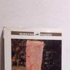 Libros de segunda mano: LOS VIKINGOS Y AMÉRICA. Lote 214401263