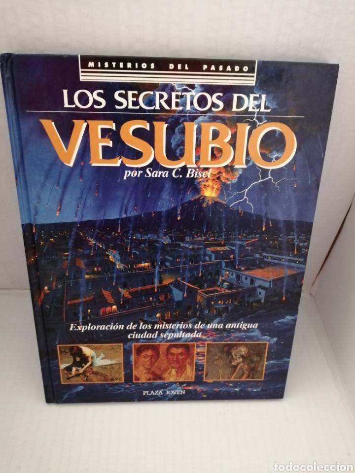 LOS SECRETOS DEL VESUBIO (PRIMERA EDICIÓN) (Libros de Segunda Mano - Historia Antigua)