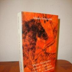 Libros de segunda mano: DICCIONARIO DE PREHISTORIA - MARIO MENÉNDEZ, ALFREDO JIMENO Y VÍCTOR M. FERNÁNDEZ - ALIANZA. Lote 218341870