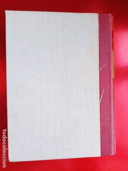 Libros de segunda mano: LIBRO-MITOLOGÍA CLÁSICA ILUSTRADA-SEEMANN-VERGARA EDITORIAL-1960- - Foto 3 - 222179677