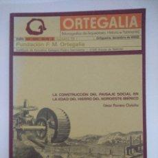 Libros de segunda mano: LIBRO/LA CONSTRUCCION DEL PAISAJE SOCIAL EN LA EDAD DEL HIERRO DEL NOROESTE IBERICO.. Lote 236613720