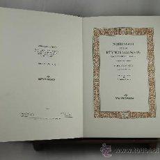 Libros de segunda mano: 3637- NOBILIARIO DE LOS EYNOS HISPANOS. VALENTIN MORENO. EDIT. GUILLERMO BLAZQUEZ. 2001.. Lote 38467381