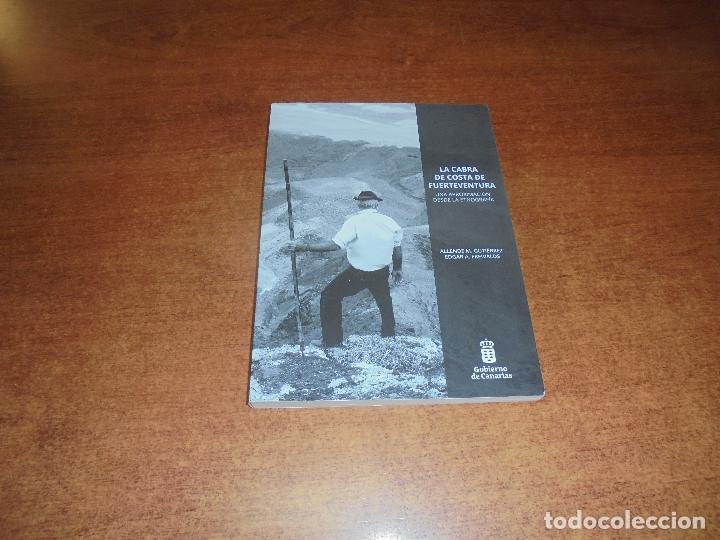 LA CABRA DE COSTA DE FUERTEVENTURA, UNA APROXIMACIÓN DESDE LA ETNOGRAFÍA- GUTIERREZ Y FREIVALDS 2018 (Libros de Segunda Mano - Historia Moderna)