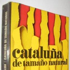 Libros de segunda mano: CATALUÑA DE TAMAÑO NATURAL - VICTOR ALBA - ILUSTRADO. Lote 221656915