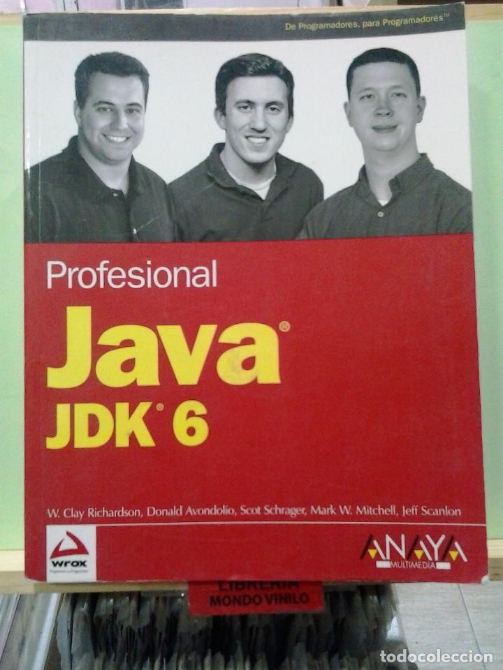 LMV - JAVA JDK 6, PROFESIONAL. VARIOS AUTORES (DE PROGRAMADORES PARA PROGRAMADORES) (Libros de Segunda Mano - Informática)