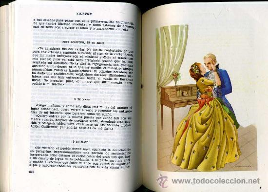 Libros de segunda mano: EL ARCO DE EROS - LA NOVELA AMOROSA -DOS TOMOS, 2700 PÁGINAS, ILUSTRACIONES. - Foto 2 - 32370022