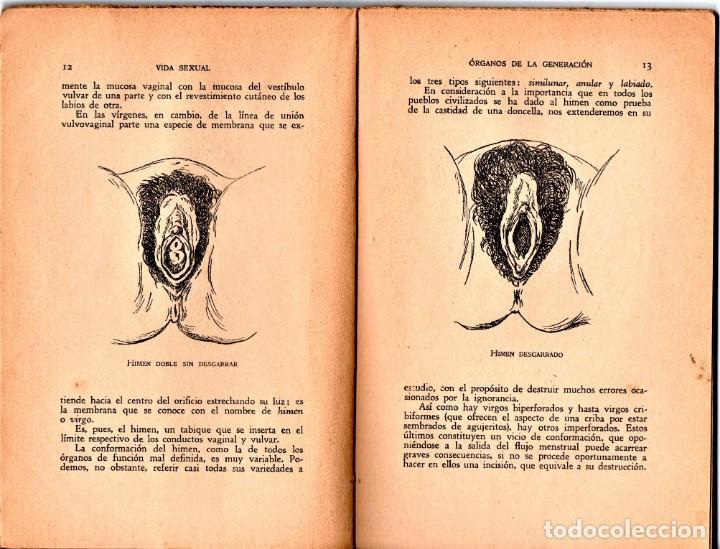 Libros de segunda mano: LIBRO, SECRETOS Y PLACERES DE LA VIDA SEXUAL,AÑO 1938,BARCELONA,EPOCA GUERRA CIVIL ESPAÑOLA,MUY RARO - Foto 3 - 165784590
