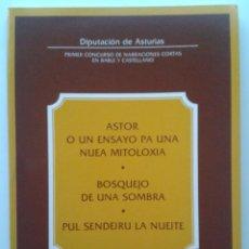 Libros de segunda mano: PRIMER CONCURSO DE NARRACIONES CORTAS EN BABLE Y CASTELLANO - DIPUTACION DE ASTURIAS - 1981. Lote 30764589
