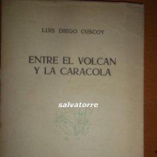 Libros de segunda mano - LUIS DIEGO CUSCOY. ENTRE EL VOLCAN Y LA CARACOLA.1957. TENERIFE. CANARIAS - 62214188