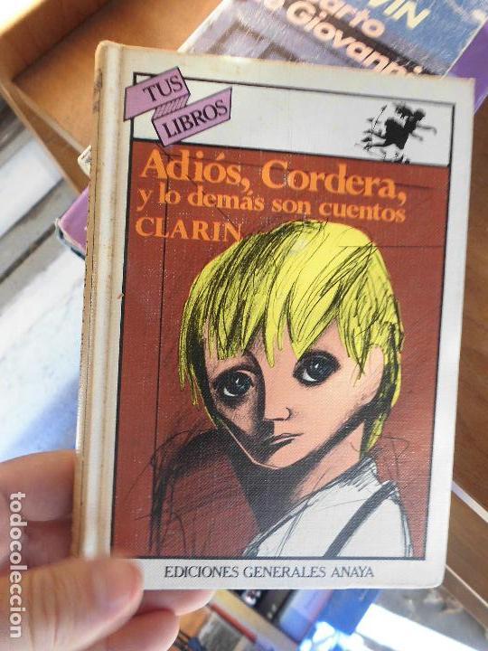 LIBRO ADIÓS, CORDERA Y LO DEMÁS SON CUENTOS CLARIN 1983 TUS LIBROS 20 ANAYA L-4898-412 (Libros de Segunda Mano (posteriores a 1936) - Literatura - Narrativa - Otros)