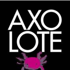 Libros de segunda mano: AXOLOTE ATROPELLADO. - HEGEMAN, HELENE.. Lote 41580854