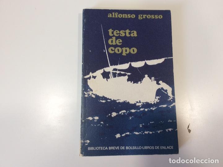 TESTA DE COPO / ALFONSO GROSSO (Libros de Segunda Mano (posteriores a 1936) - Literatura - Narrativa - Otros)