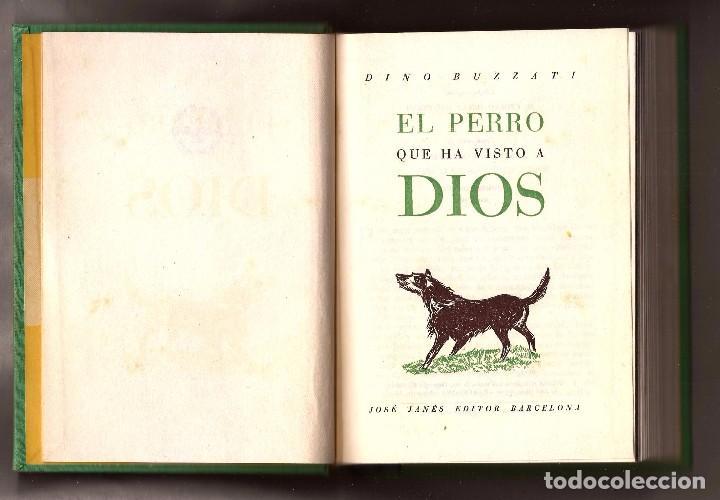 Libros de segunda mano: EL PERRO QUE HA VISTO A DIOS - DINO BUZZATI – ED. JOSÉ JANÉS, 1956 - 1ª EDICIÓN - Foto 4 - 104815339