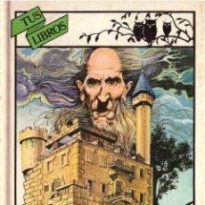 Libros de segunda mano: EL FANTASMA DE CANTERVILLE - OSCAR WILDE; ANAYA, TUS LIBROS, Nº 69. Lote 105950319
