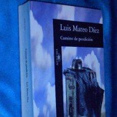 Libros de segunda mano: LUIS MATEO DÍEZ, CAMINO DE PERDICIÓN · ALFAGUARA, 1993. Lote 110441719