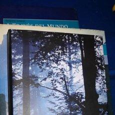 Libros de segunda mano: LIBRO EL SILENCIO DEL BOSQUE DE TANA FRENCH - TAPA DURA EL CIRCULO DE LECTORES. Lote 112117943