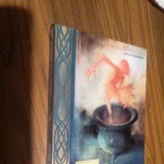 Libros de segunda mano: CRÓNICAS DE PRYDAIN. LLOYD ALEXANDER. EL CALDERO NEGRO. ALFAGUARA. BUEN ESTADO. . Lote 113035087