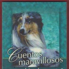 Libros de segunda mano: CUENTOS MARAVILLOSOS PARA SUBIR A LA MONTAÑA LAURA DORIA ALBIÑANA 281 PÁGINAS MADRID 2013 LL2214. Lote 115766371