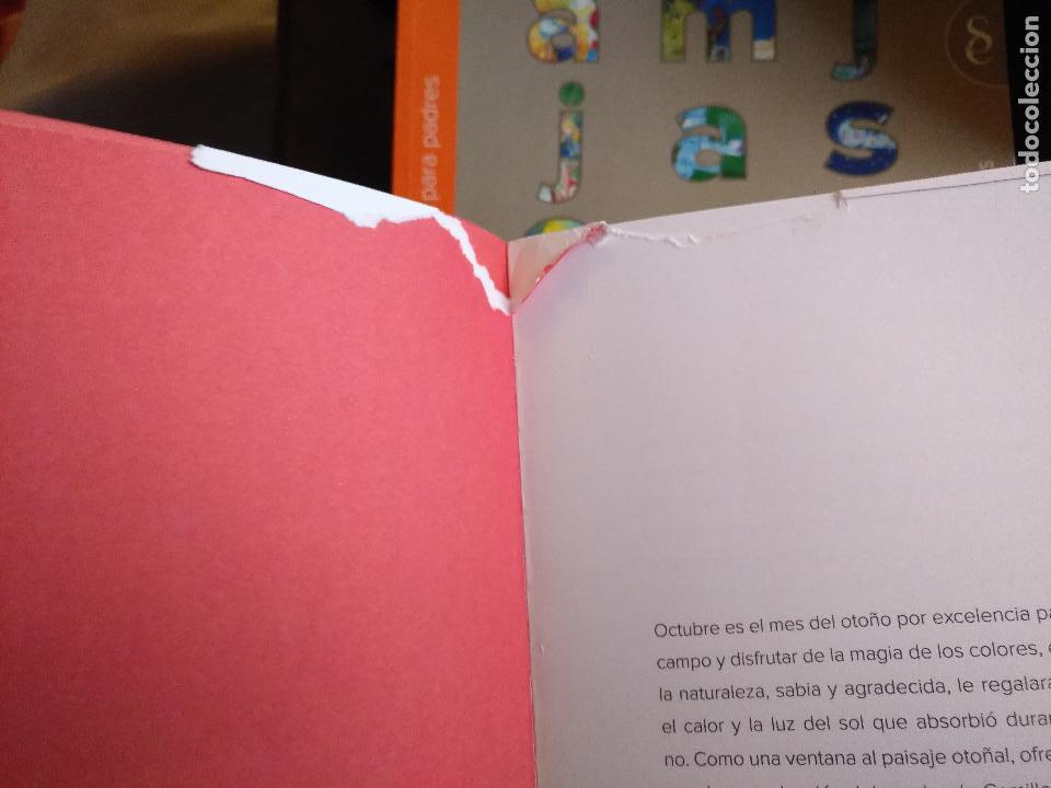 Libros de segunda mano: LITERATURA INFANTIL COLECCION GARABATO 12 TOMOS + GUIA PADRES SIGNO INFANTIL CUENTOS INGLES CANCIONE - Foto 13 - 125250431