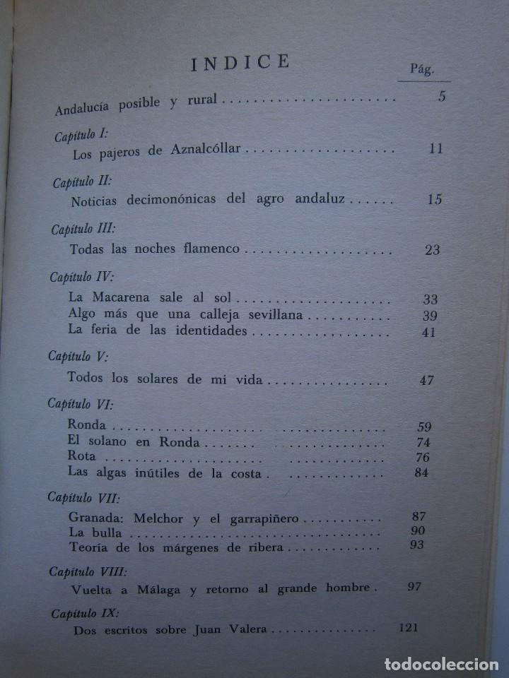 Libros de segunda mano: VIAJE Y ESTANCIA ANDALUZA Bernardo Victor Carande Caja Rural de Sevilla 1981 Coleccion Espiga Roja - Foto 11 - 127494067
