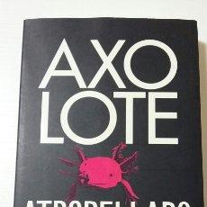 Libros de segunda mano: AXOLOTE ATROPELLADO. HELENE HEGEMANN. 2011. Lote 127887052