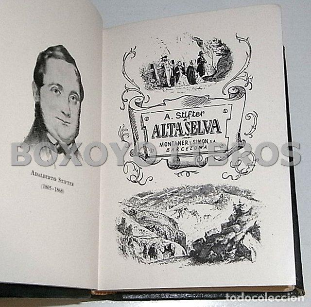 Libros de segunda mano: STIFTER, Adalberto. Alta selva. Montaner y SimónColección Bibliotec Selección núm. 36 - Foto 2 - 137270686