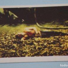 Libros de segunda mano: CROMO DE FLASH GORDON SIN PEGAR Nº 133 AÑO 1980 DEL ALBUM FLASH GORDON DE E.G.C.S.A.. Lote 208450496