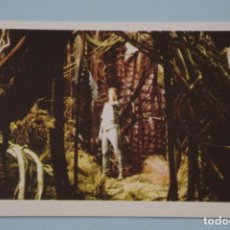 Libros de segunda mano: CROMO DE FLASH GORDON SIN PEGAR Nº 135 AÑO 1980 DEL ALBUM FLASH GORDON DE E.G.C.S.A.. Lote 147304810