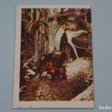 Libros de segunda mano: CROMO DE FLASH GORDON SIN PEGAR Nº 156 AÑO 1980 DEL ALBUM FLASH GORDON DE E.G.C.S.A.. Lote 208450528