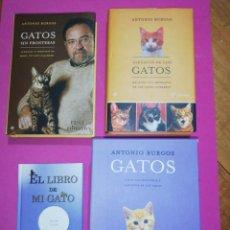 Libros de segunda mano: ANTONI BURGOS, GATOS LIBROS + CAJA EXTERIOR. Lote 148597470