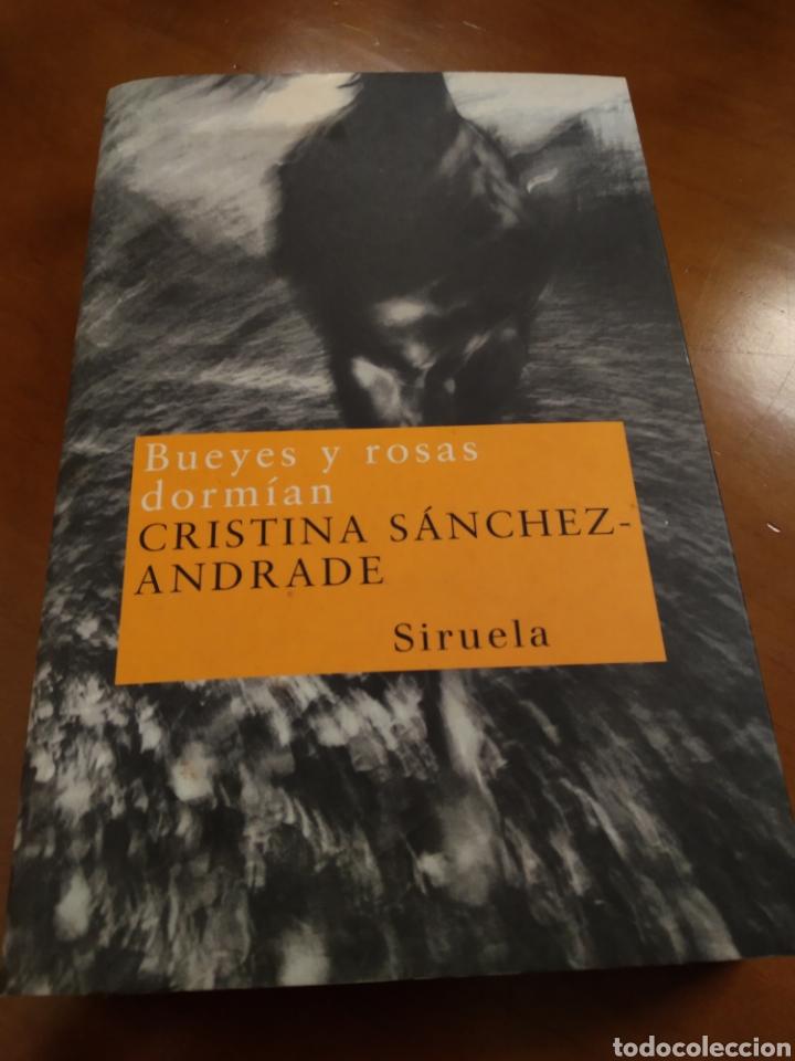 BUEYES Y ROSAS DORMÍAN. CRISRINA SANCHEZ-ANDRADE (Libros de Segunda Mano (posteriores a 1936) - Literatura - Narrativa - Otros)