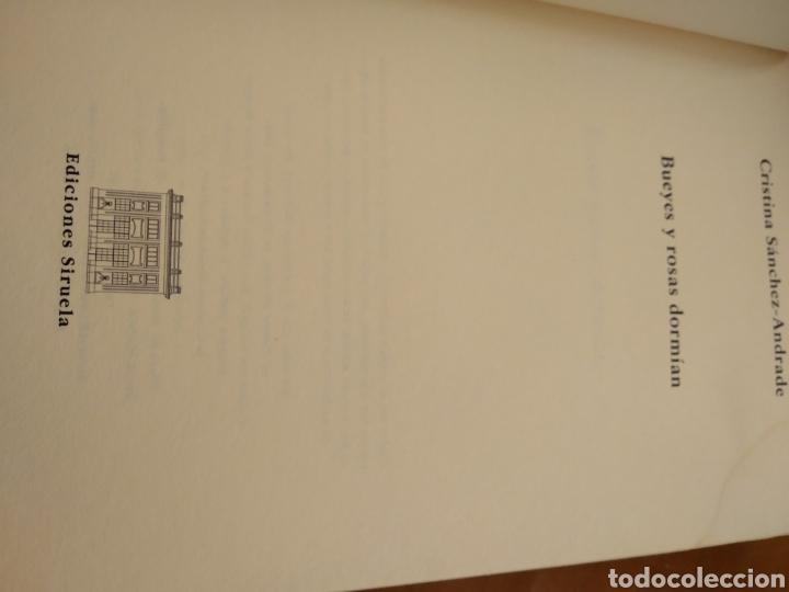 Libros de segunda mano: BUEYES Y ROSAS DORMÍAN. CRISRINA SANCHEZ-ANDRADE - Foto 2 - 150825508