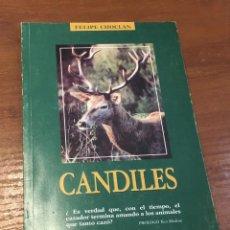 Libros de segunda mano: CANDILES DE FELIPE CHOCLÁN. AUTOGRAFIADO. 1ª EDICIÓN. PRÓLOGO TICO MEDINA. RARO. Lote 153573186