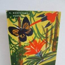 Libros de segunda mano: EL PARAISO DEL DIABLO. A. MONTEZUMA HURTADO. 1 EDICION. CULTURA CLASICA Y MODERNA 1966. . Lote 157770170