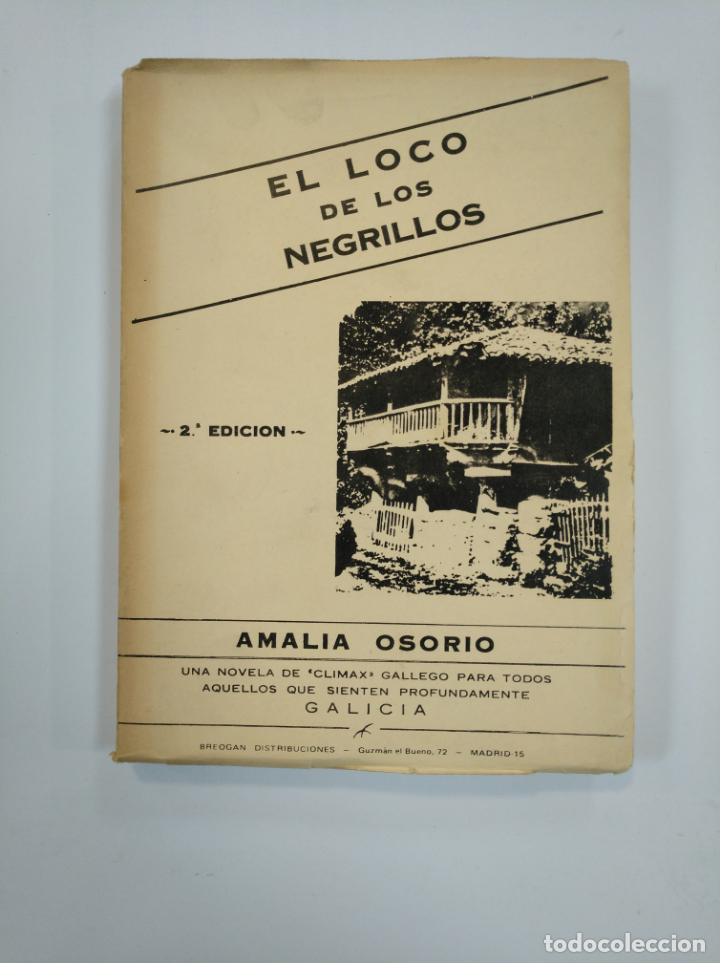 EL LOCO DE LOS NEGRILLOS. - OSORIO, AMALIA. TDK381 (Libros de Segunda Mano (posteriores a 1936) - Literatura - Narrativa - Otros)