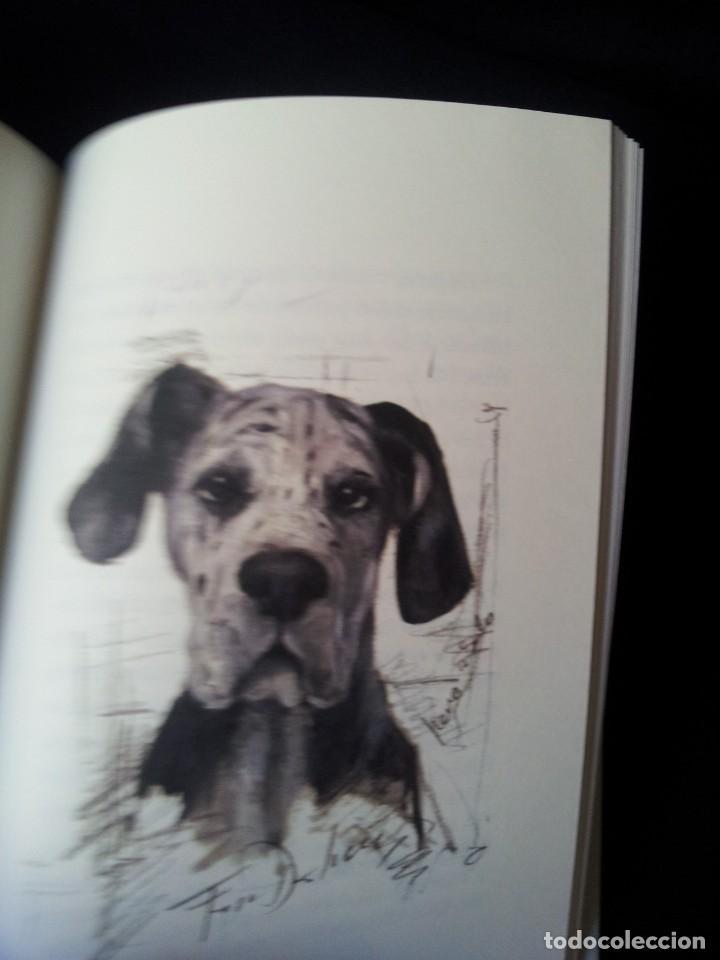 Libros de segunda mano: ARTURO PEREZ REVERTE - PERROS E HIJOS DE PERRA - ILUSTRADO POR AUGUSTO FERRER DALMAU - 2014 - Foto 3 - 160320558