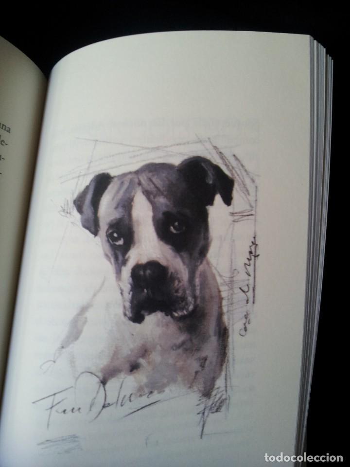 Libros de segunda mano: ARTURO PEREZ REVERTE - PERROS E HIJOS DE PERRA - ILUSTRADO POR AUGUSTO FERRER DALMAU - 2014 - Foto 4 - 160320558