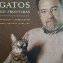Libros de segunda mano: GATOS SIN FRONTERAS. ANTONIO BURGOS. LA ESFERA DE LOS LIBROS. DÉCIMA EDICIÓN FEBRERO DE 2004. CARTON. Lote 161382390
