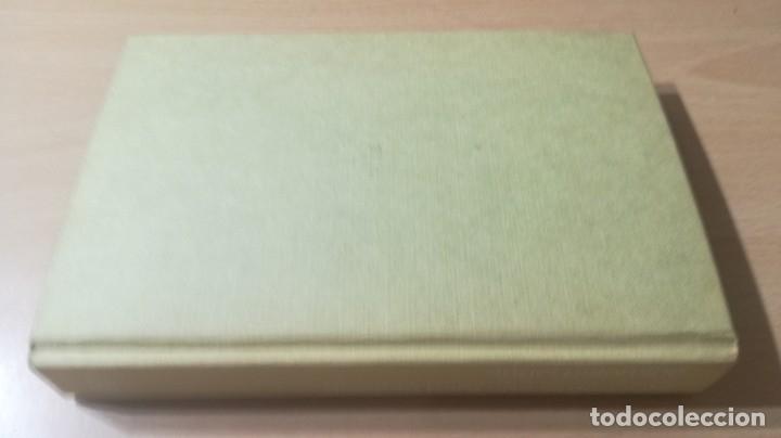 Libros de segunda mano: DIVORCIO PARA UNA VIRGEN ROTA - ANGEL PALOMINO - DEDICATORIA AUTOGGRAFA - primera edicion - Foto 2 - 178396055