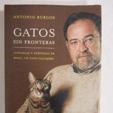Libros de segunda mano: ANTONIO BURGOS. GATOS SIN FRONTERAS. Lote 191147023