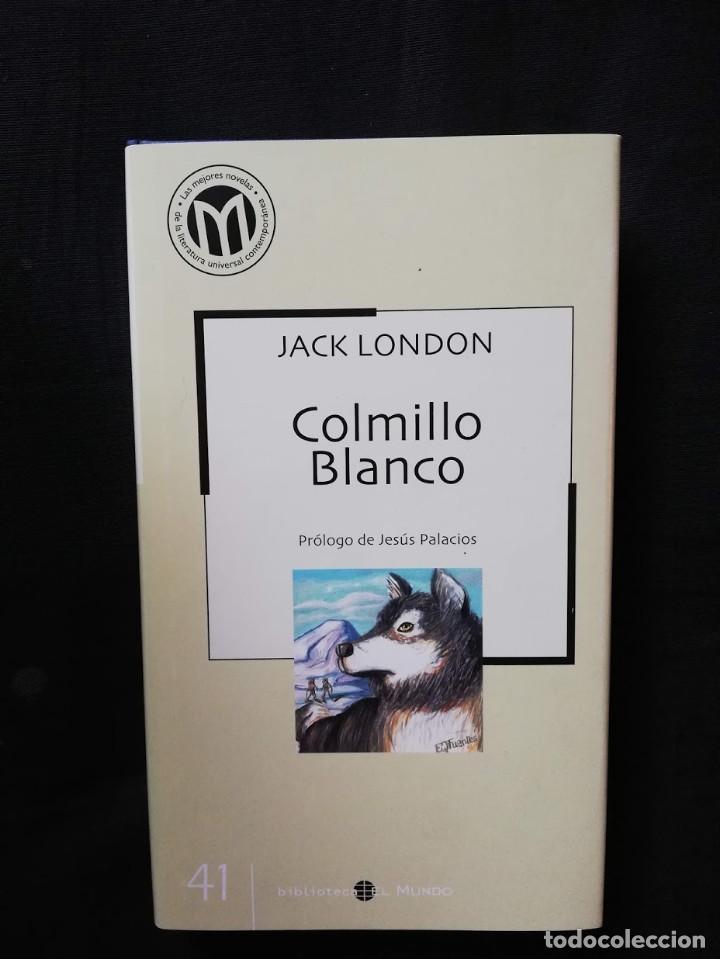 COLMILLO BLANCO - JACK LONDON (Libros de Segunda Mano (posteriores a 1936) - Literatura - Narrativa - Otros)