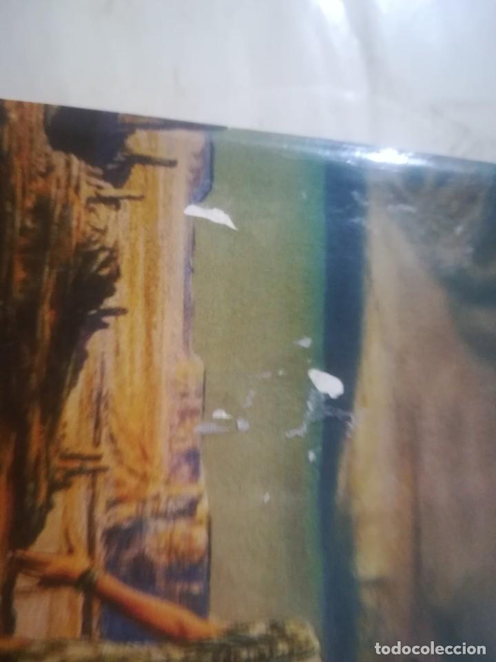 Libros de segunda mano: La que recuerda - Linda Lay Shuler - Foto 6 - 246356685