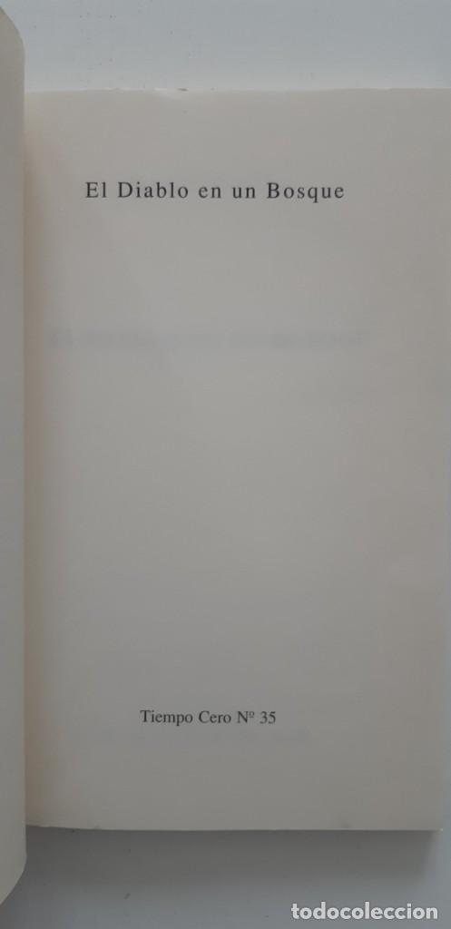 Libros de segunda mano: El diablo en un bosque. Gene Wolfe. Valdemar Tiempo Cero. - Foto 3 - 235051775