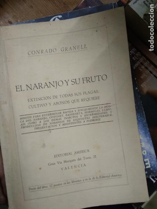 EL NARANJO Y SU FRUTO, CONRADO GRANELL. L.7539-1063 (Libros de Segunda Mano (posteriores a 1936) - Literatura - Narrativa - Otros)