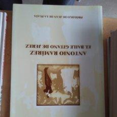 Libros de segunda mano: G-70 LIBRO EL BAILE GITANO DE JEREZ ANTONIO RAMIRES DANIEL PINEDA NOVO JUNTA DE ANDALUCIA. Lote 257289985