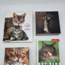 Libros de segunda mano: 4 LIBROS GATOS ( ILUSTRADOS ) VER FOTOS Y DESCRIPCIÓN. Lote 257802425