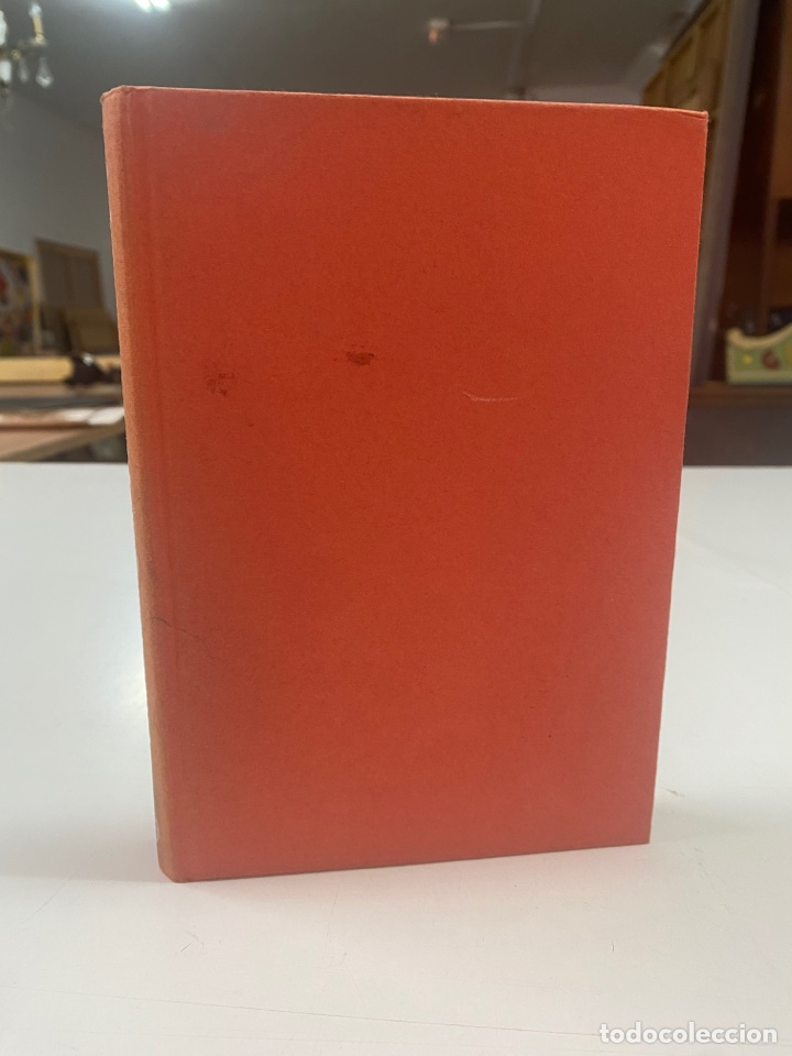 Libros de segunda mano: Y DIOS EN LA ÚLTIMA PLAYA POR CRISTÓBAL ZARAGOZA 3a EDICIÓN 1981 - Foto 2 - 260852125