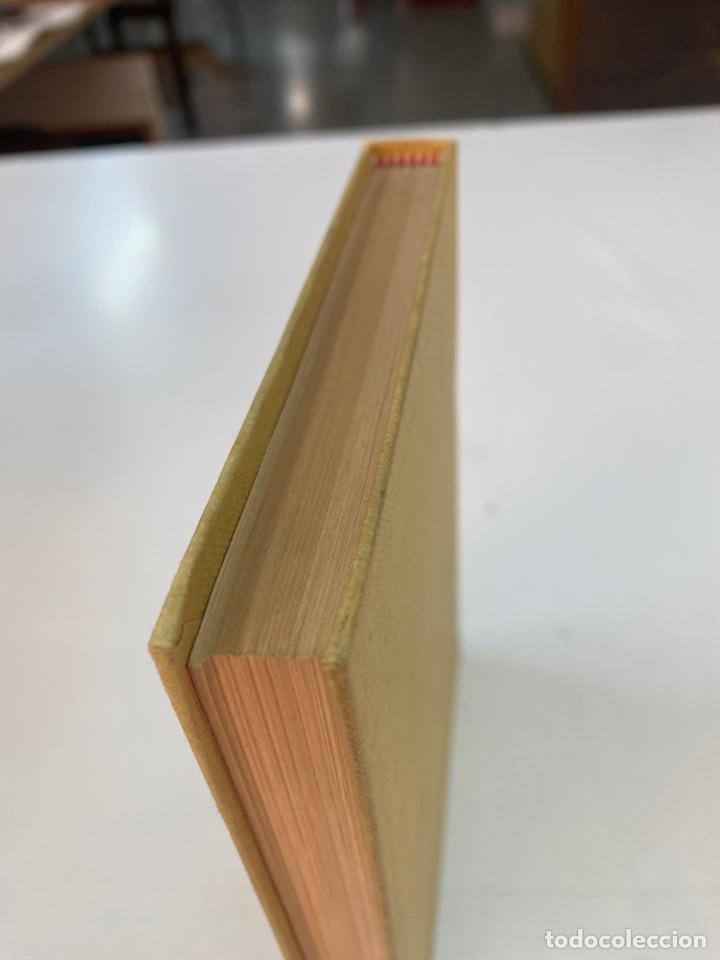 Libros de segunda mano: EL PROYECTO ( Y OTROS RELATOS ) POR MERCEDES SALISACHS 1a EDICIÓN 1978 - Foto 5 - 261201695